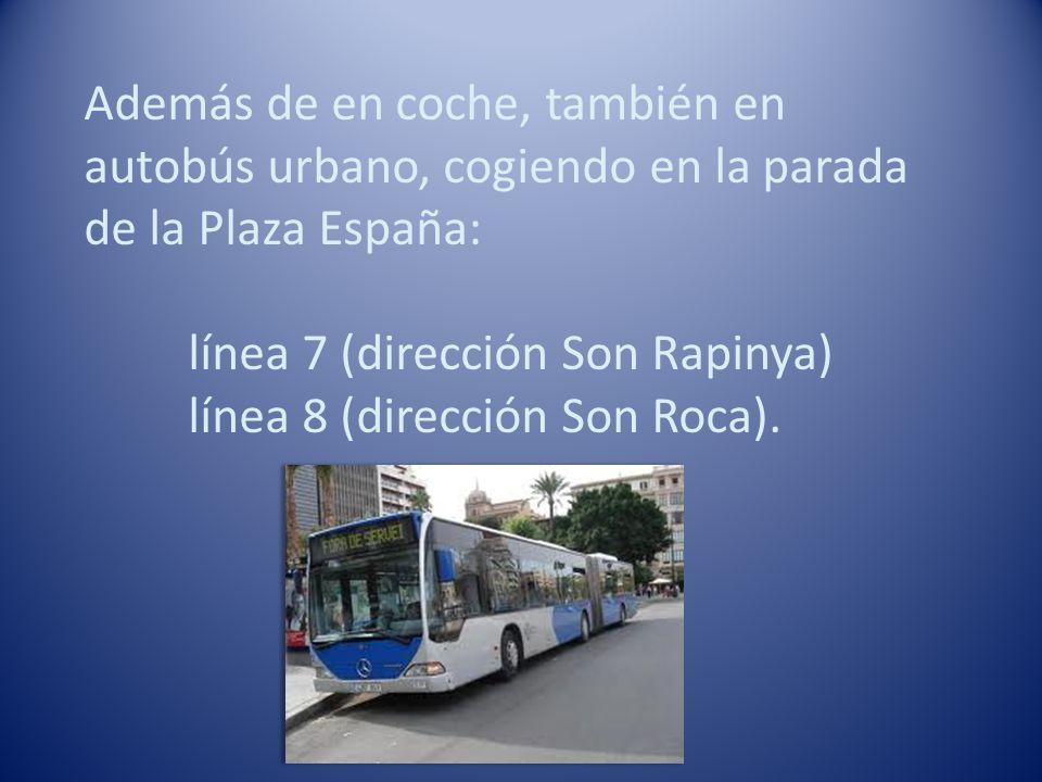 Además de en coche, también en autobús urbano, cogiendo en la parada de la Plaza España: línea 7 (dirección Son Rapinya) línea 8 (dirección Son Roca).