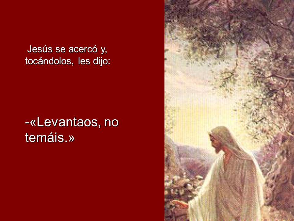 Jesús se acercó y, tocándolos, les dijo: Jesús se acercó y, tocándolos, les dijo: -«Levantaos, no temáis.»
