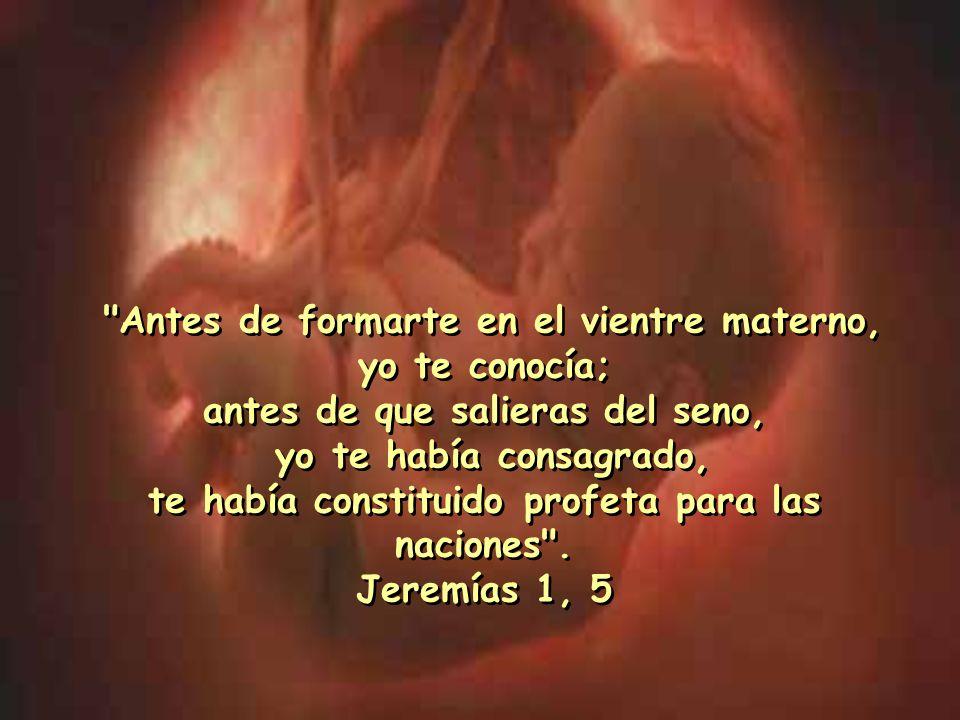 Existe la ironía de los que defienden la vida de los animales y apoyan el aborto, de los que rechazan la pena de muerte para criminales convictos y co