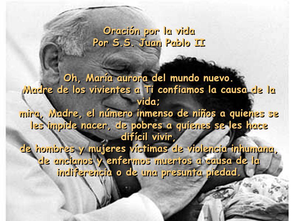 Dijo Jesús: Cuídense de despreciar a cualquiera de estos pequeños, porque les aseguro que sus ángeles en el cielo están constantemente en presencia de