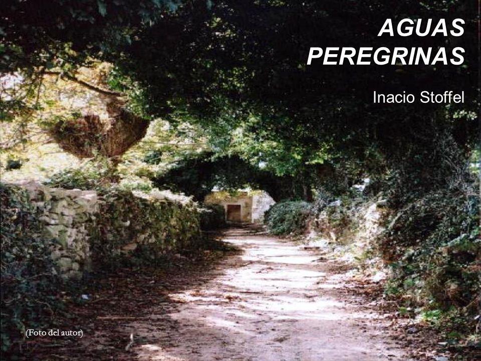 AGUAS PEREGRINAS Inacio Stoffel (Foto del autor)