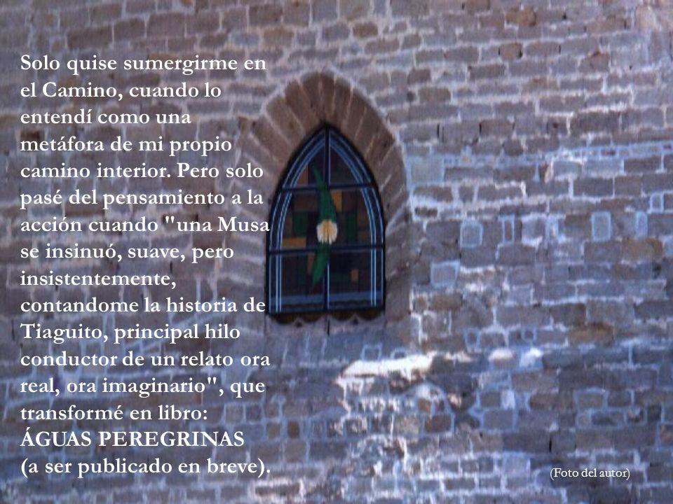 La catedral nos invita más a la contemplación que a la oración, más al éxtasis que al recogimiento.