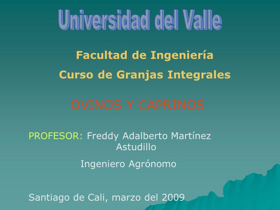 Facultad de Ingeniería Curso de Granjas Integrales OVINOS Y CAPRINOS PROFESOR: Freddy Adalberto Martínez Astudillo Ingeniero Agrónomo Santiago de Cali