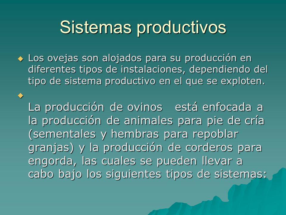 Sistemas productivos Los ovejas son alojados para su producción en diferentes tipos de instalaciones, dependiendo del tipo de sistema productivo en el