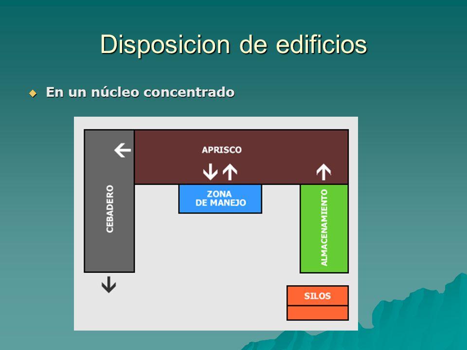 Disposicion de edificios En un núcleo concentrado En un núcleo concentrado