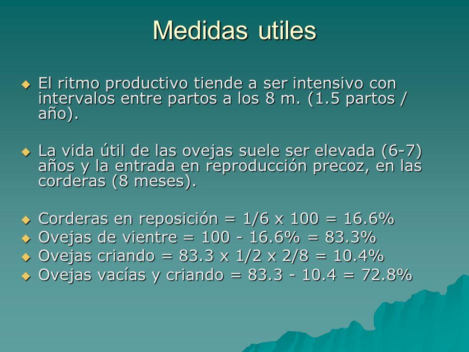 Medidas utiles El ritmo productivo tiende a ser intensivo con intervalos entre partos a los 8 m. (1.5 partos / año). El ritmo productivo tiende a ser