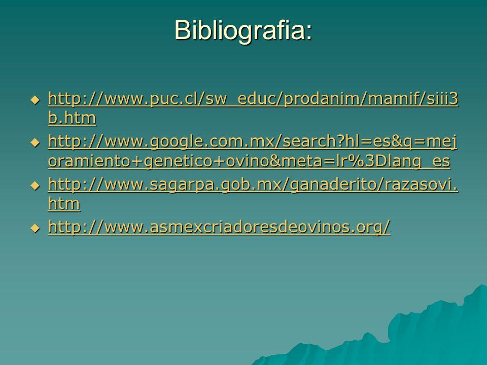 Bibliografia: http://www.puc.cl/sw_educ/prodanim/mamif/siii3 b.htm http://www.puc.cl/sw_educ/prodanim/mamif/siii3 b.htm http://www.puc.cl/sw_educ/prod
