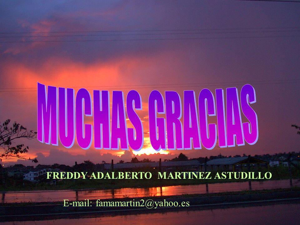 E-mail: famamartin2@yahoo.es FREDDY ADALBERTO MARTINEZ ASTUDILLO