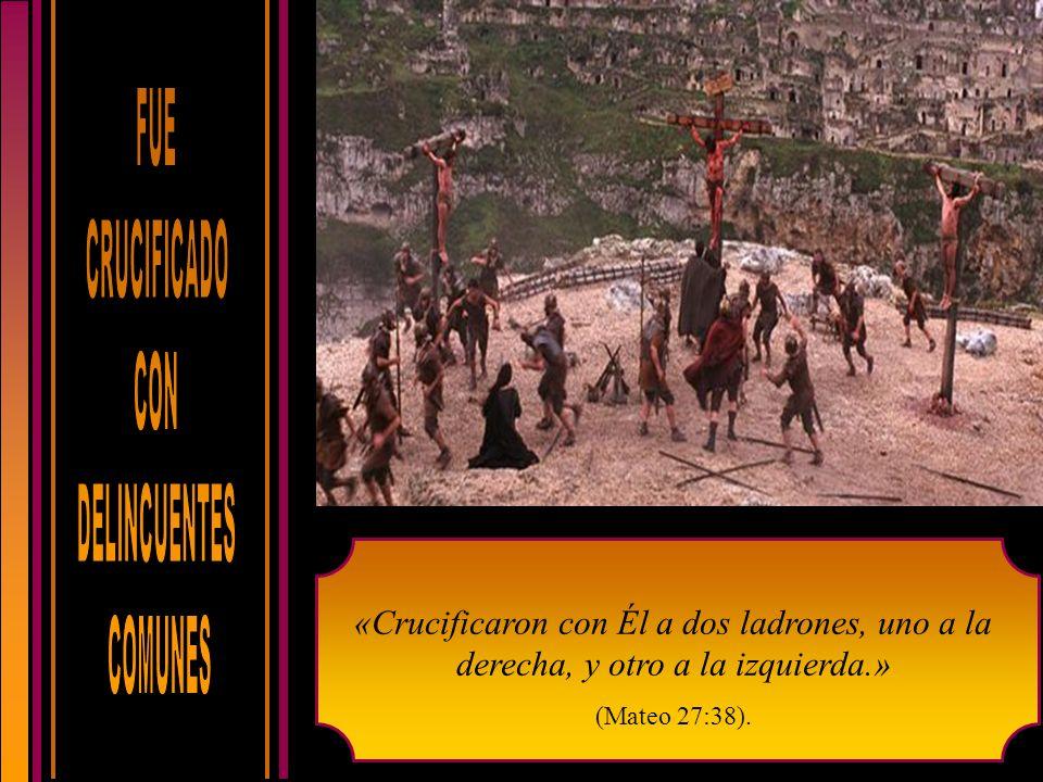 «Crucificaron con Él a dos ladrones, uno a la derecha, y otro a la izquierda.» (Mateo 27:38).