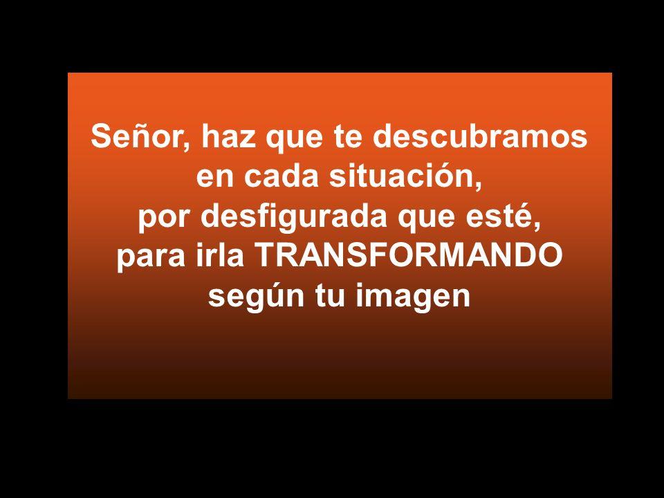 Y la vida se les transfiguró por dentro Yéndose, guardaron el secreto de Jesús en su corazón
