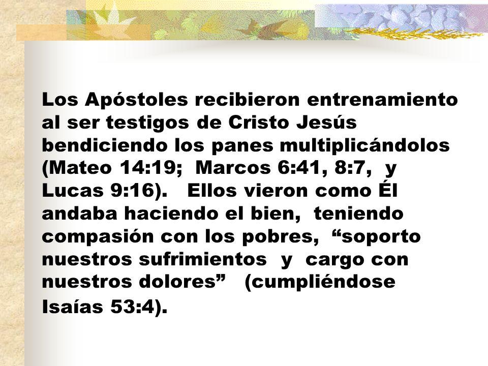 Los Apóstoles recibieron entrenamiento al ser testigos de Cristo Jesús bendiciendo los panes multiplicándolos (Mateo 14:19; Marcos 6:41, 8:7, y Lucas