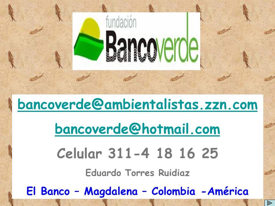 bancoverde@ambientalistas.zzn.com bancoverde@hotmail.com Celular 311-4 18 16 25 Eduardo Torres Ruidiaz El Banco – Magdalena – Colombia -América