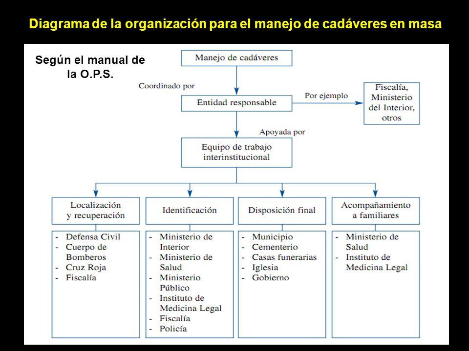 Diagrama de la organización para el manejo de cadáveres en masa Según el manual de la O.P.S.