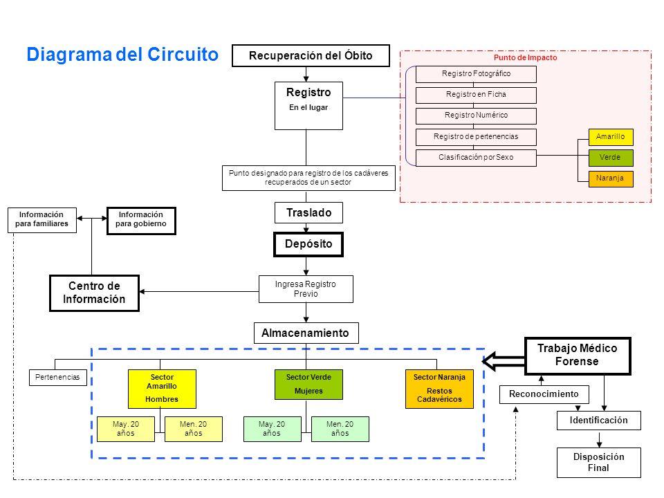 Recuperación del Óbito Registro En el lugar Traslado Depósito Ingresa Registro Previo Centro de Información Información para gobierno Almacenamiento May.