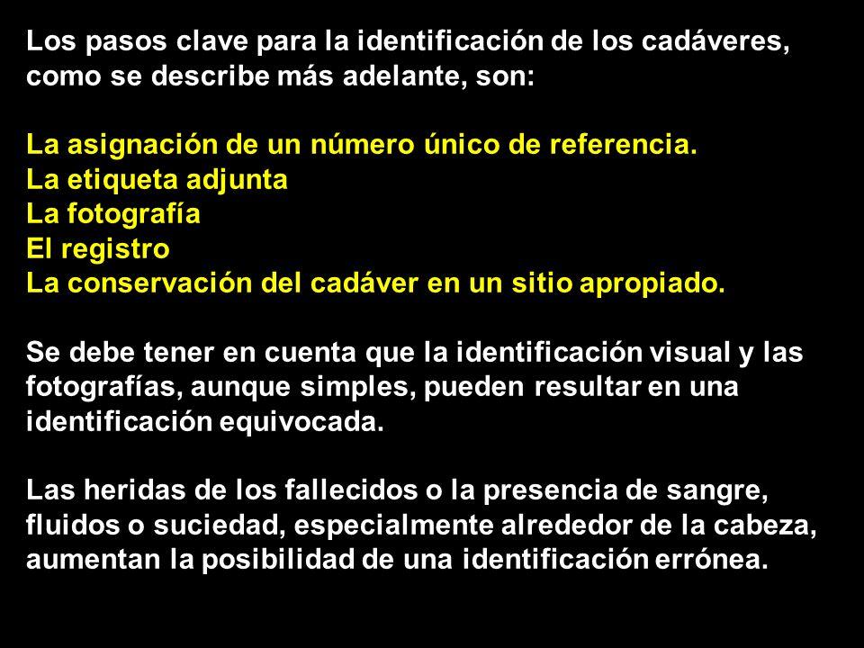 Los pasos clave para la identificación de los cadáveres, como se describe más adelante, son: La asignación de un número único de referencia.