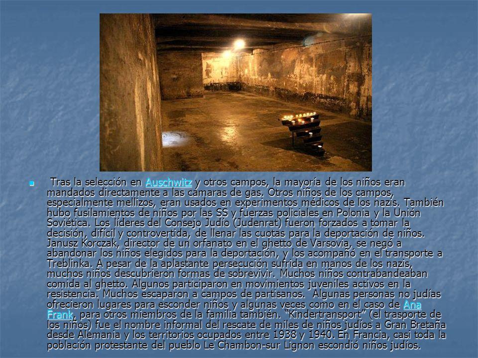 Tras la selección en Auschwitz y otros campos, la mayoría de los niños eran mandados directamente a las cámaras de gas. Otros niños de los campos, esp