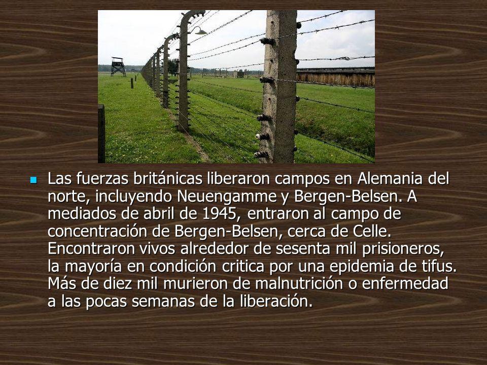 Las fuerzas británicas liberaron campos en Alemania del norte, incluyendo Neuengamme y Bergen-Belsen. A mediados de abril de 1945, entraron al campo d