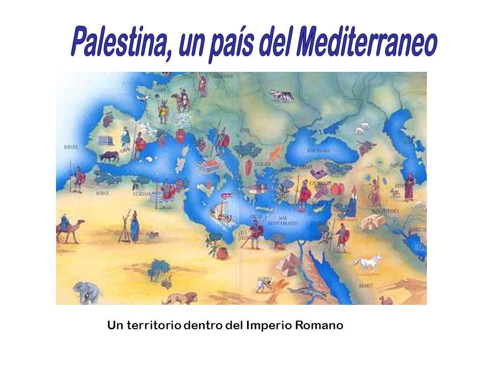 Mar Mediterráneo Genesaret o Mar de Galilea Muerto Es un lago de aguas con minerales que impiden la vida En sus orillas hay pueblos de pescadores Para los judíos el mar simboliza el peligro