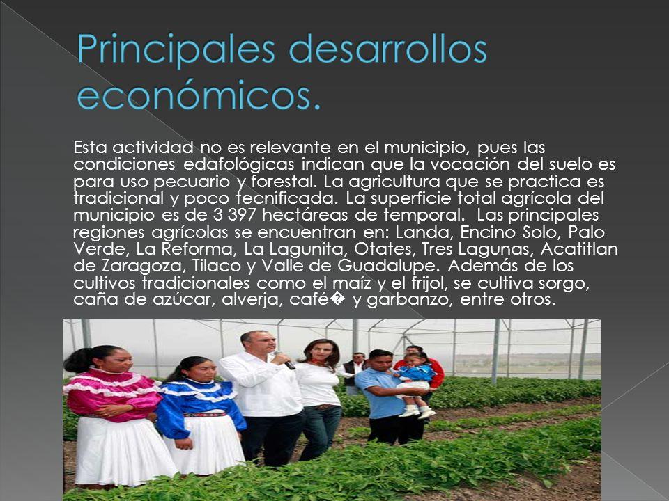 Esta actividad no es relevante en el municipio, pues las condiciones edafológicas indican que la vocación del suelo es para uso pecuario y forestal. L