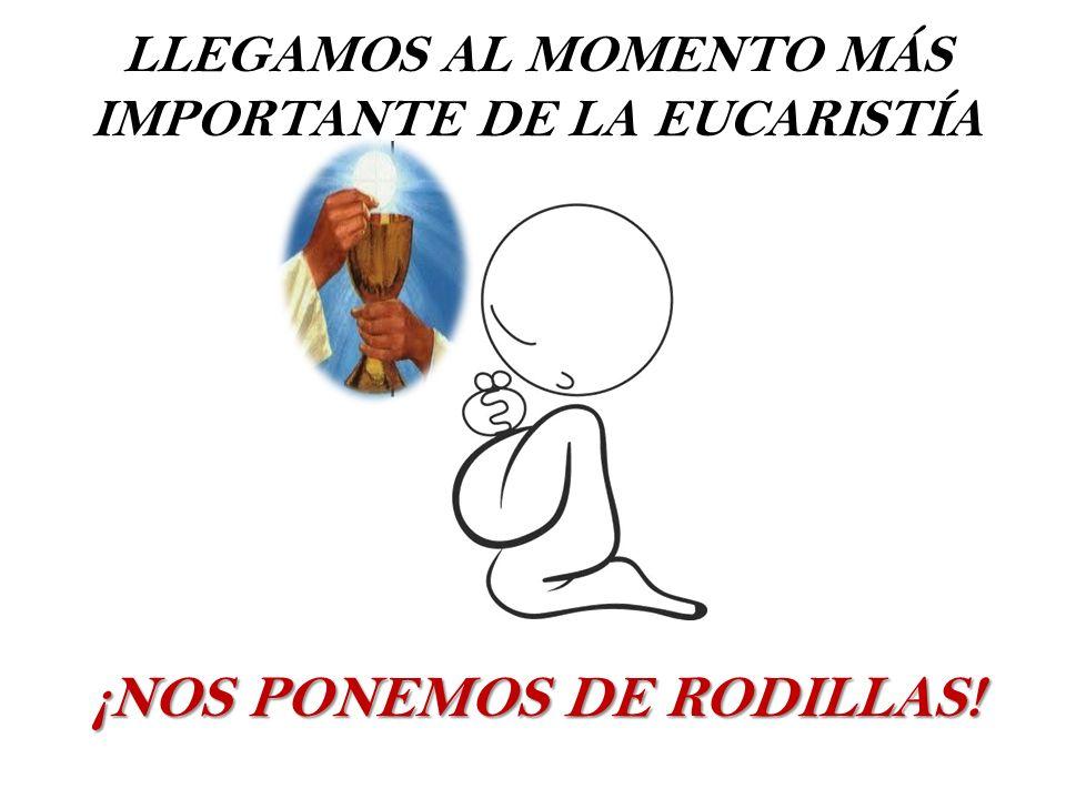 LLEGAMOS AL MOMENTO MÁS IMPORTANTE DE LA EUCARISTÍA ¡NOS PONEMOS DE RODILLAS!