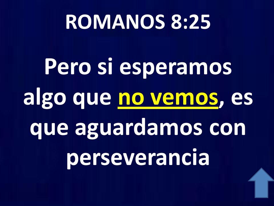 ROMANOS 8:25 Pero si esperamos algo que no vemos, es que aguardamos con perseverancia