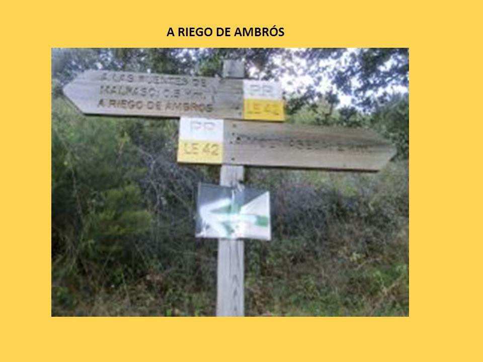 A RIEGO DE AMBRÓS