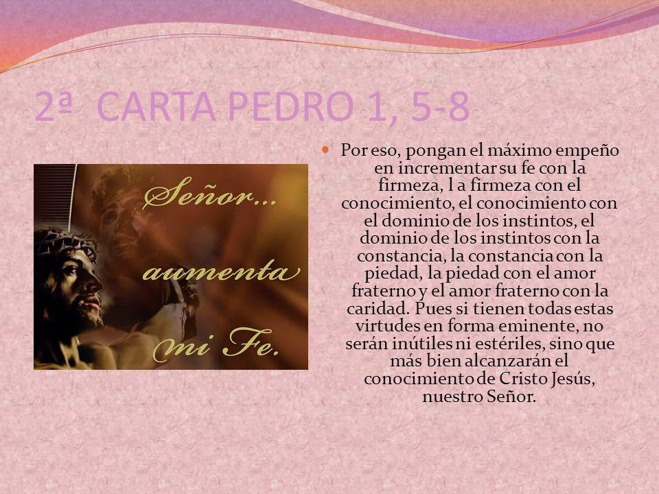 2ª CARTA PEDRO 1, 5-8 Por eso, pongan el máximo empeño en incrementar su fe con la firmeza, l a firmeza con el conocimiento, el conocimiento con el do