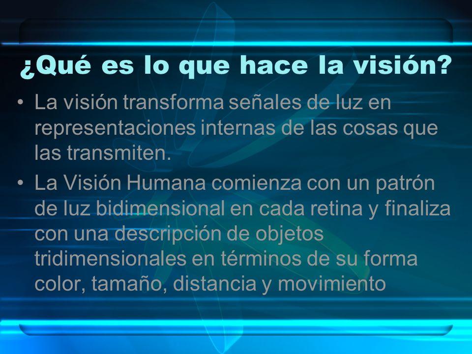 ¿Qué es lo que hace la visión? La visión transforma señales de luz en representaciones internas de las cosas que las transmiten. La Visión Humana comi