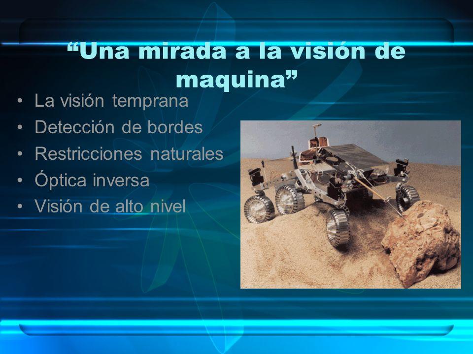 Una mirada a la visión de maquina La visión temprana Detección de bordes Restricciones naturales Óptica inversa Visión de alto nivel