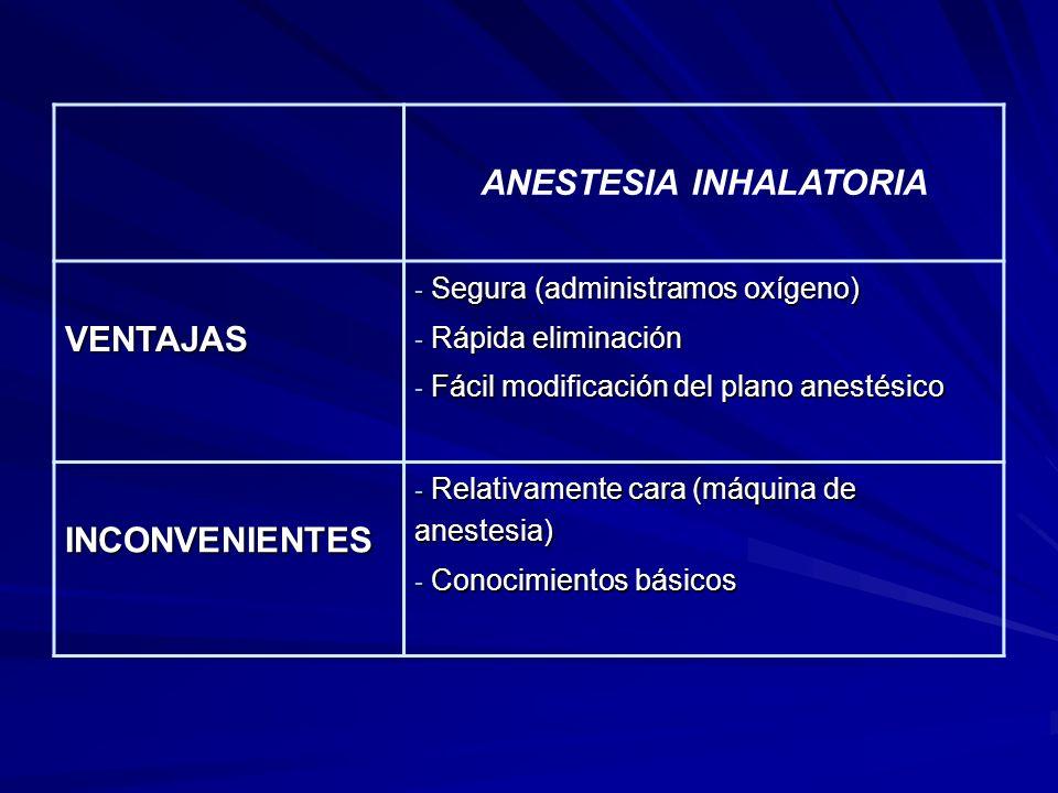 ANESTESIA INHALATORIA VENTAJAS - Segura (administramos oxígeno) - Rápida eliminación - Fácil modificación del plano anestésico INCONVENIENTES - Relativamente cara (máquina de anestesia) - Conocimientos básicos