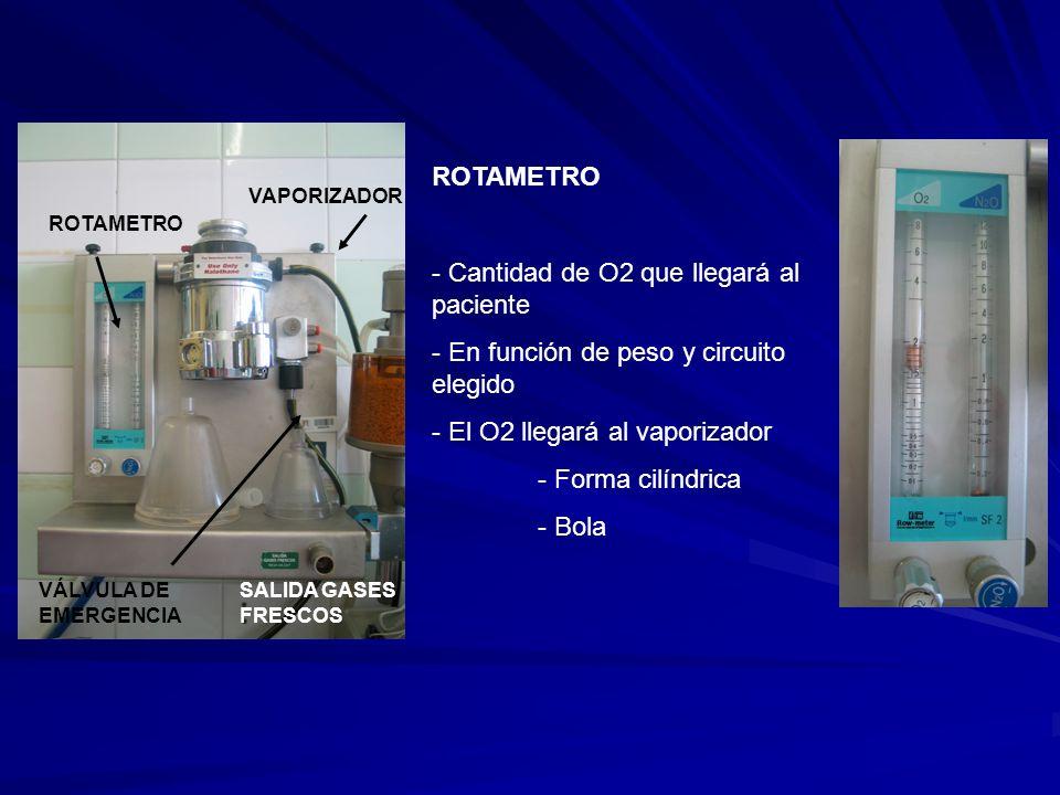 ROTAMETRO VAPORIZADOR VÁLVULA DE EMERGENCIA SALIDA GASES FRESCOS ROTAMETRO - Cantidad de O2 que llegará al paciente - En función de peso y circuito elegido - El O2 llegará al vaporizador - Forma cilíndrica - Bola