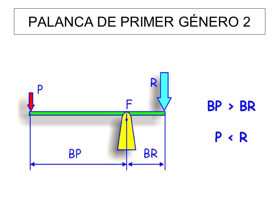 PALANCA DE PRIMER GÉNERO 2