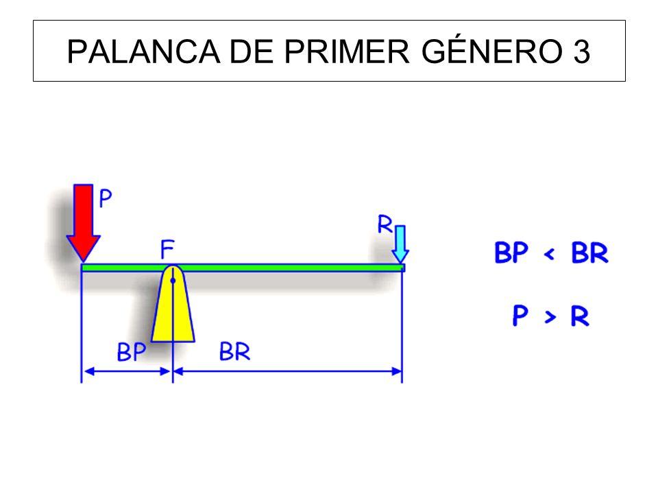 PALANCA DE PRIMER GÉNERO 3