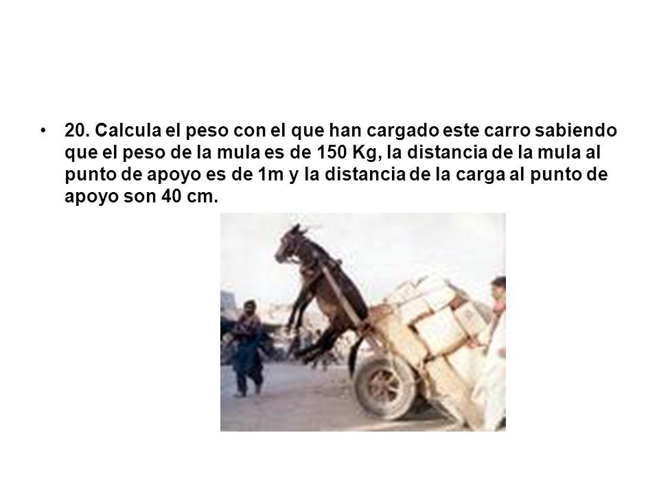 20. Calcula el peso con el que han cargado este carro sabiendo que el peso de la mula es de 150 Kg, la distancia de la mula al punto de apoyo es de 1m