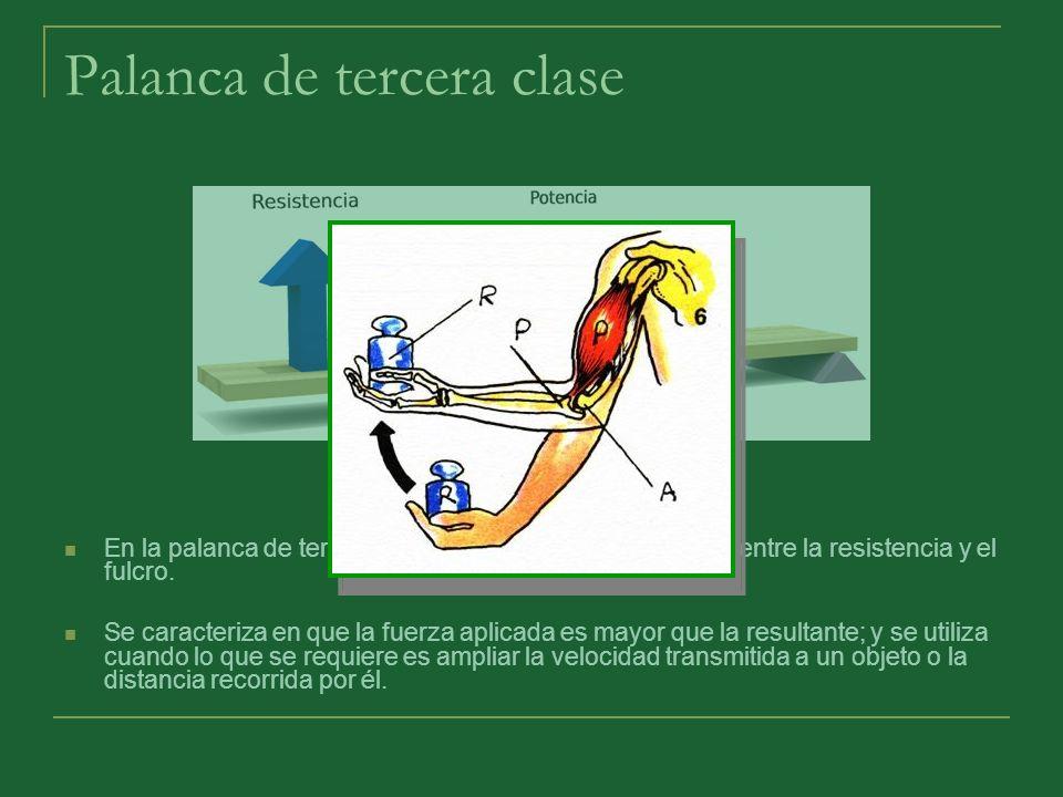 Palanca de tercera clase En la palanca de tercera clase, la potencia se encuentra entre la resistencia y el fulcro. Se caracteriza en que la fuerza ap