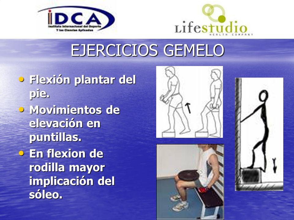 EJERCICIOS GEMELO Flexión plantar del pie. Flexión plantar del pie. Movimientos de elevación en puntillas. Movimientos de elevación en puntillas. En f
