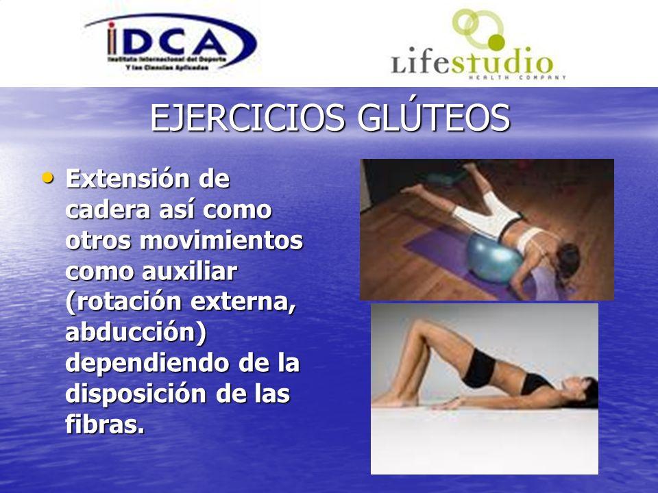 EJERCICIOS GLÚTEOS Extensión de cadera así como otros movimientos como auxiliar (rotación externa, abducción) dependiendo de la disposición de las fib