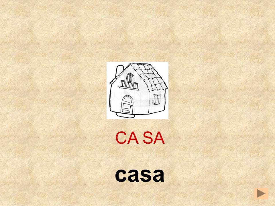 CA PAZA SA CA __