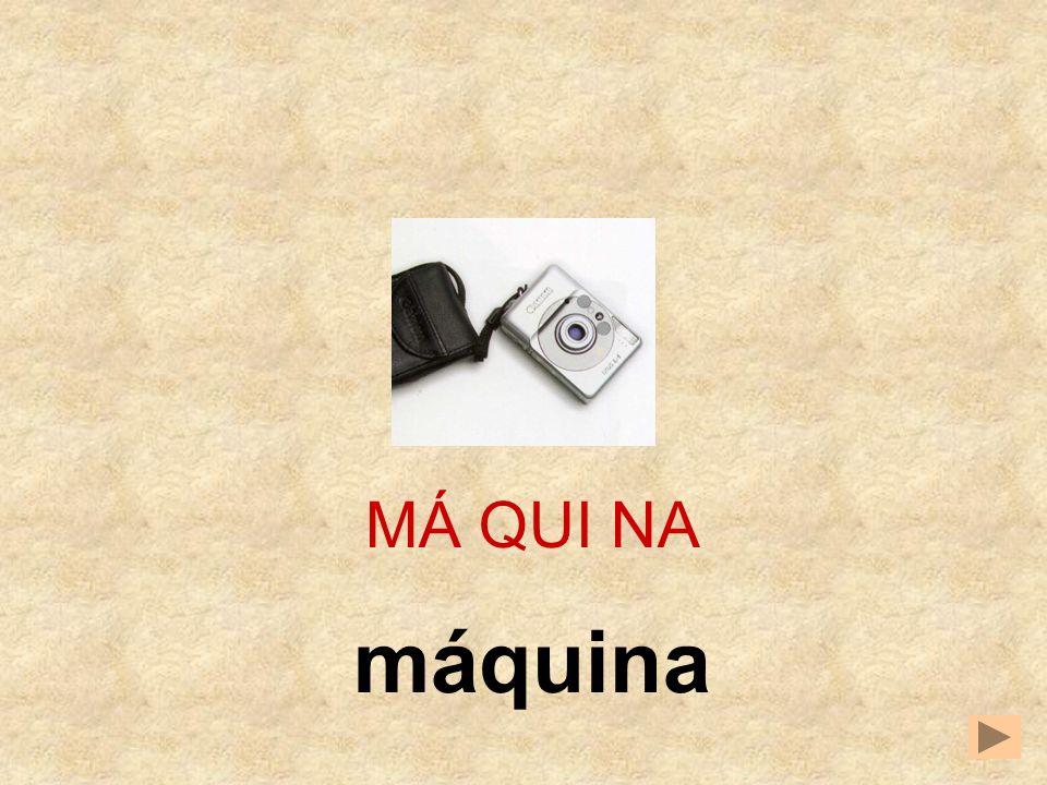 QUI CINA MA MÁ QUI __