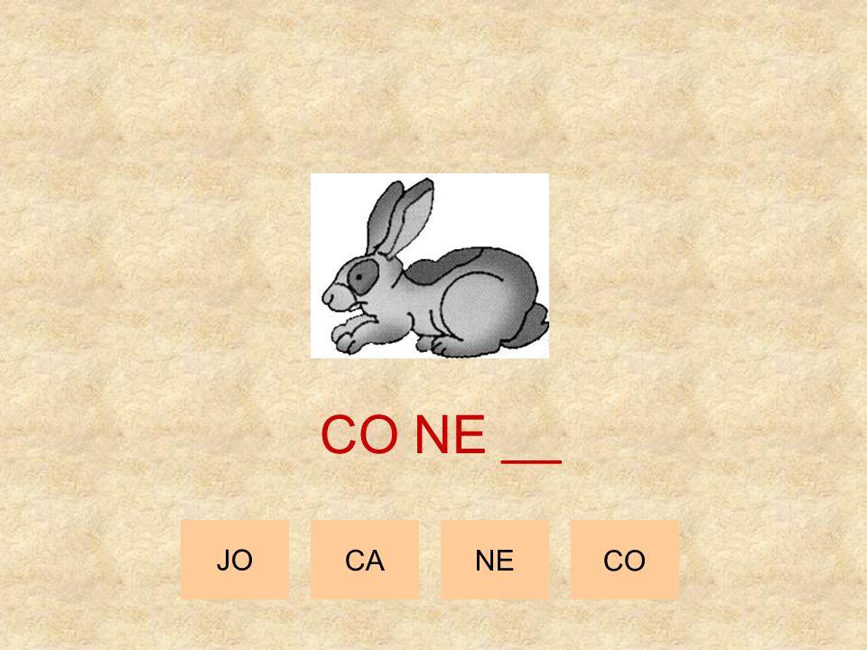 JO CANE CO CO __ __