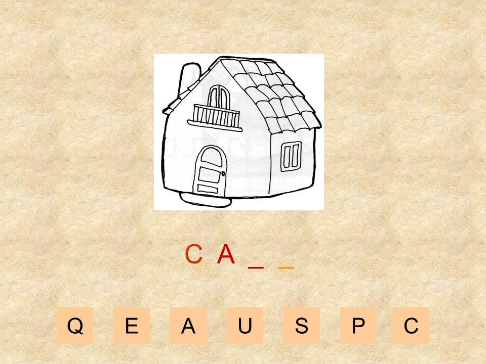 QEAUSPC C _ _ _