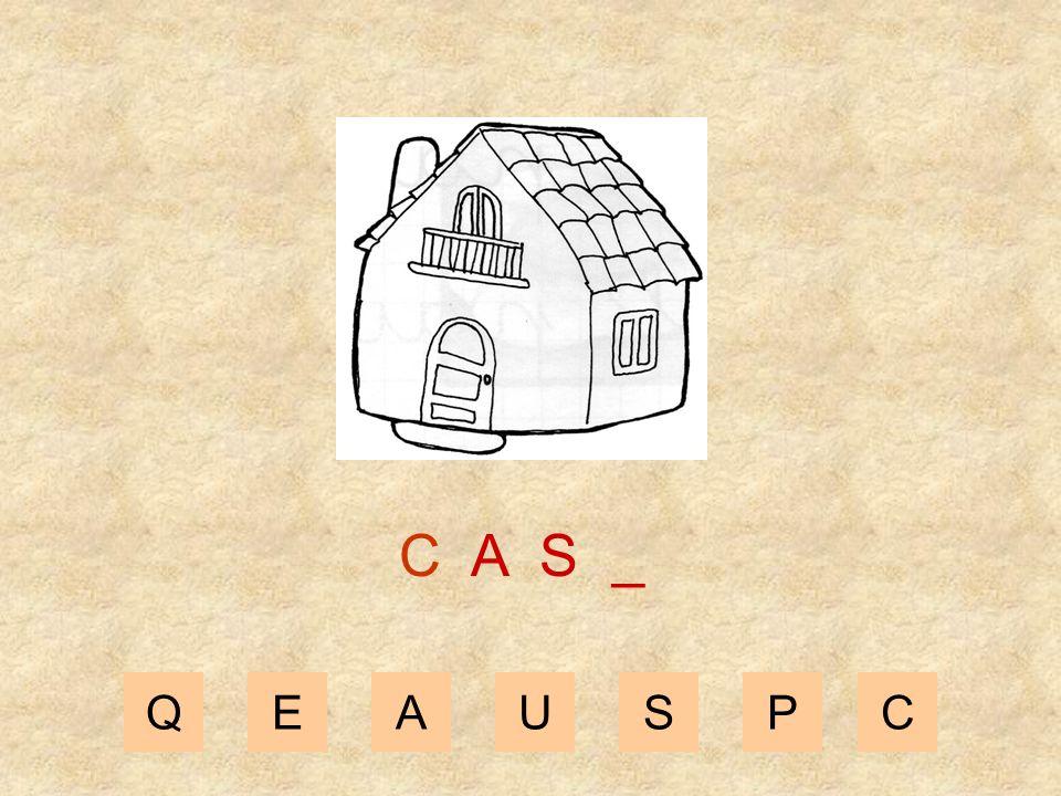 QEAUSPC C A _ _