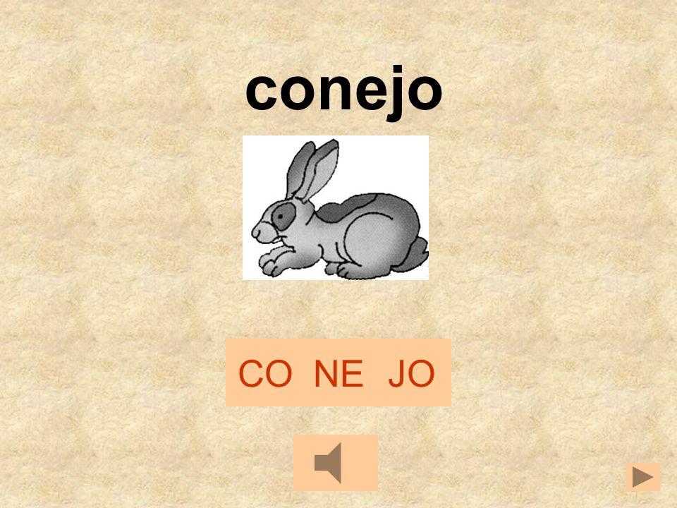 CONEJO conejo