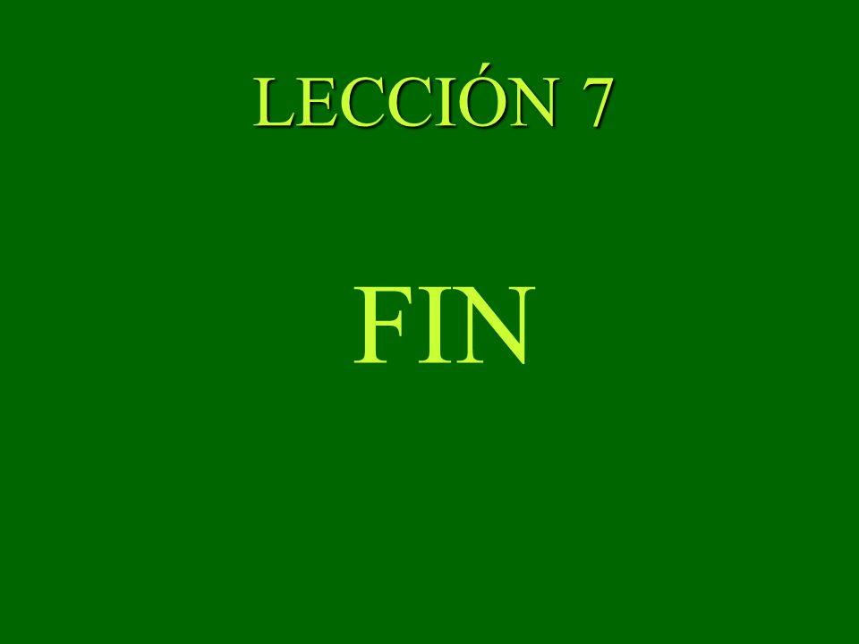 LECCIÓN 7 FIN
