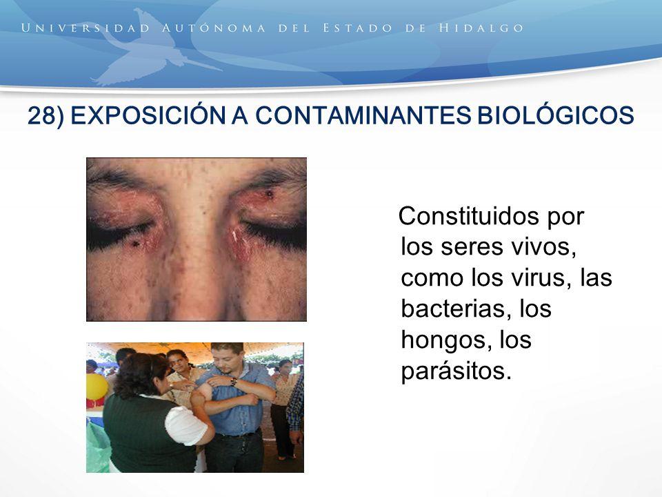 28) EXPOSICIÓN A CONTAMINANTES BIOLÓGICOS Constituidos por los seres vivos, como los virus, las bacterias, los hongos, los parásitos.