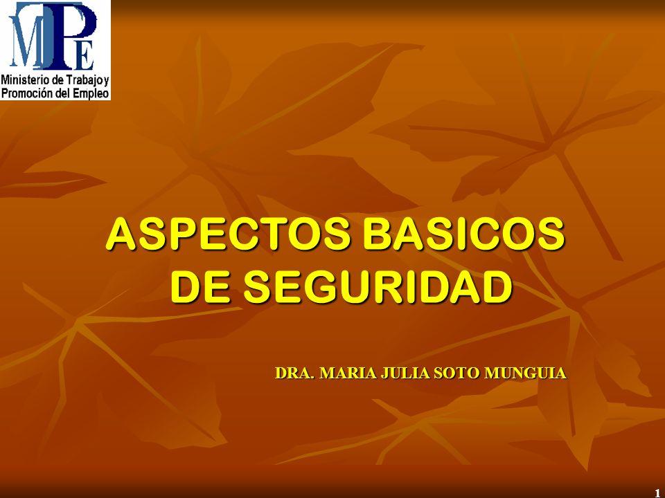 1 ASPECTOS BASICOS DE SEGURIDAD DE SEGURIDAD DRA. MARIA JULIA SOTO MUNGUIA
