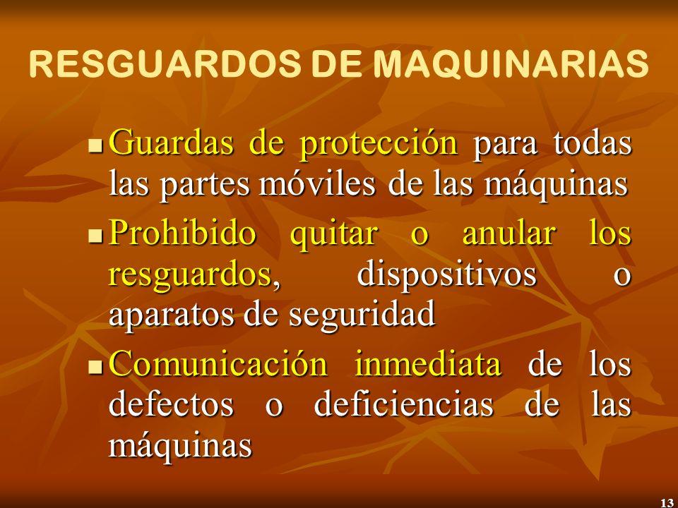 13 RESGUARDOS DE MAQUINARIAS Guardas de protección para todas las partes móviles de las máquinas Guardas de protección para todas las partes móviles d