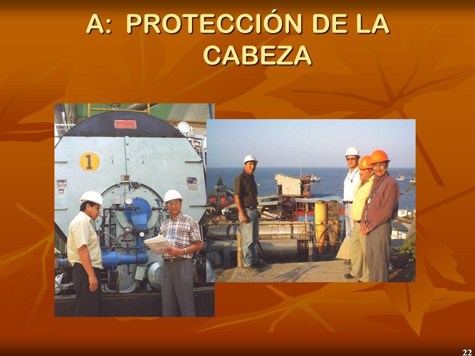 22 A:PROTECCIÓN DE LA CABEZA