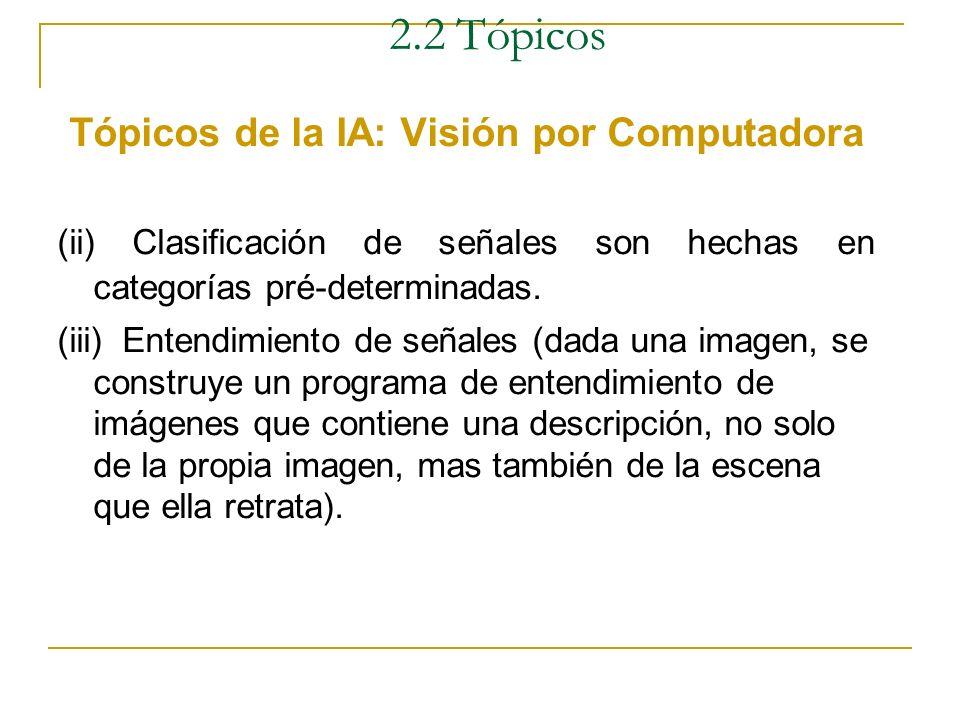 2.2 Tópicos Tópicos de la IA: Visión por Computadora Definición Es la tarea de procesar una información, de comprender una escena a partir de las imág