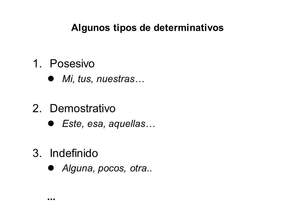 Algunos tipos de determinativos 1.Posesivo Mi, tus, nuestras… 2.Demostrativo Este, esa, aquellas… 3.Indefinido Alguna, pocos, otra.....